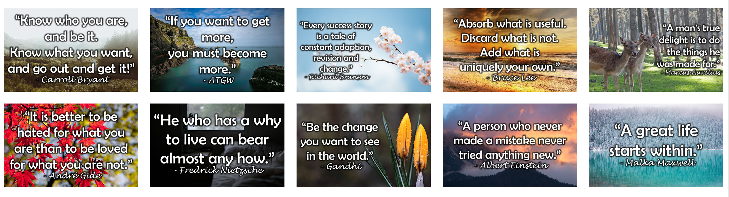 Quotes Graphics