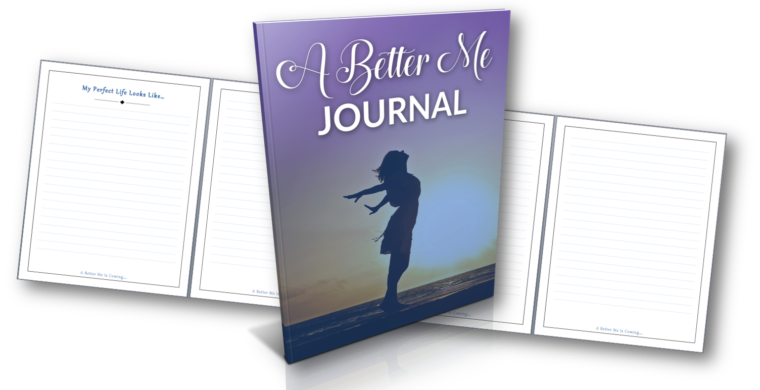 Profit from Selling Journals