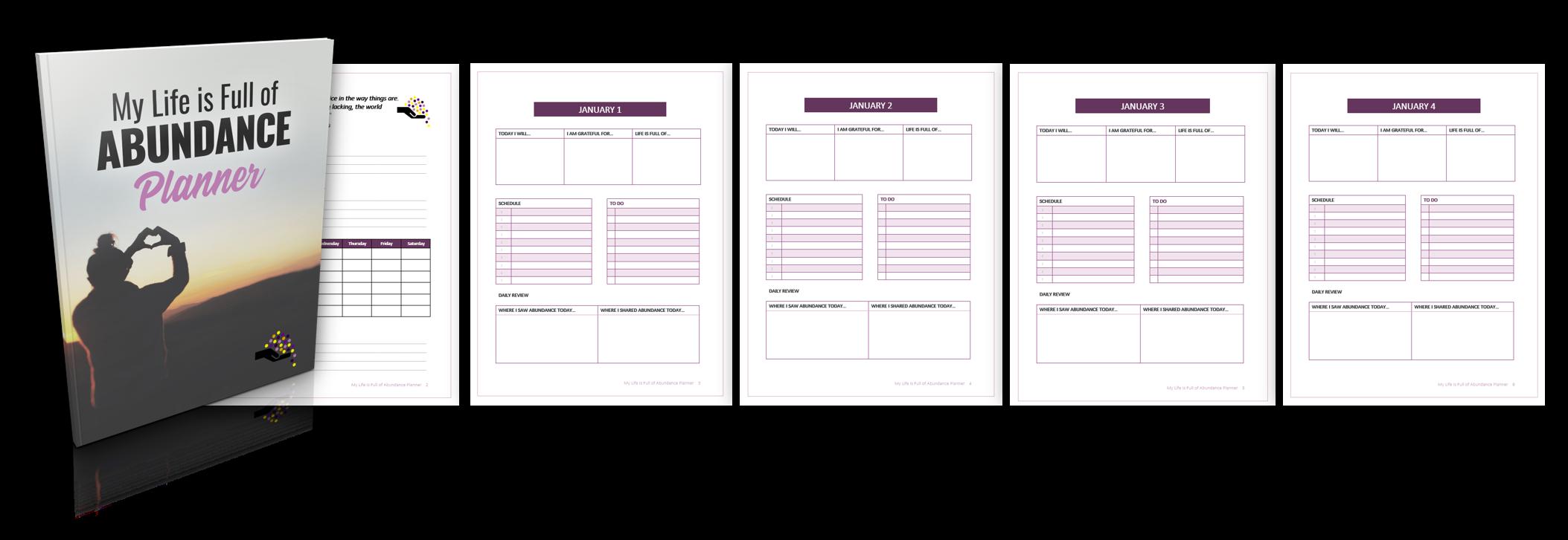Developing an Abundance Planner 1