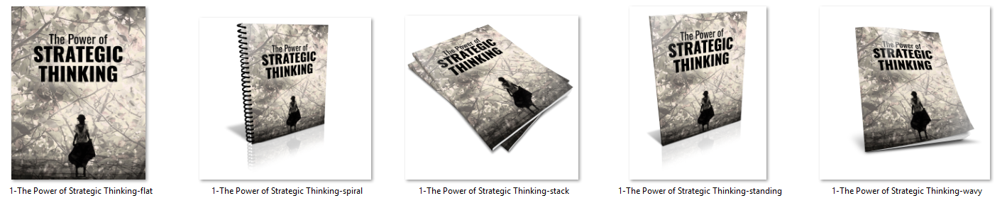 Strategic Thinking Report Ecovers