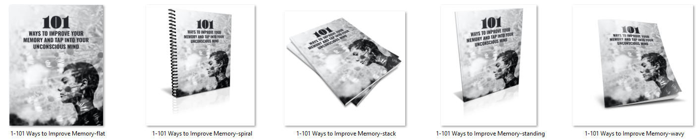 memory report ecover image