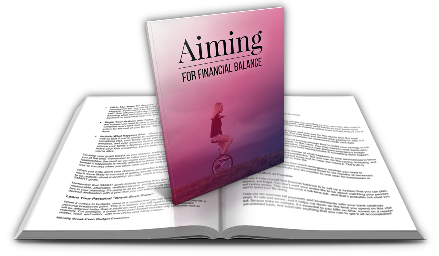 4-report Aiming For Financial Balance