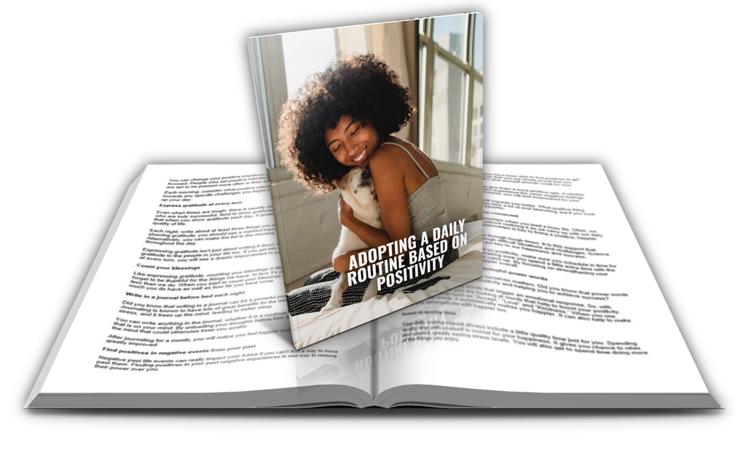 Adopting a Daily Routine Based on Positivity PLR Report