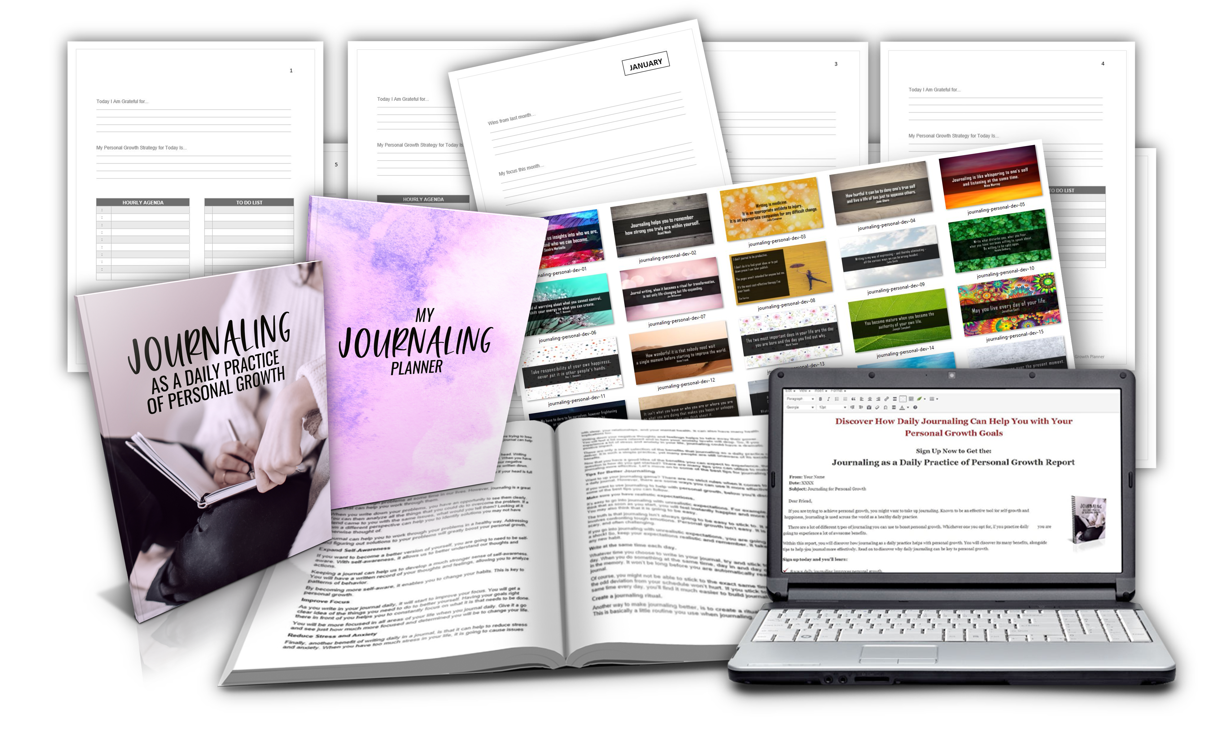 journaling report and planner pack plr